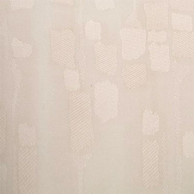rembrant4903